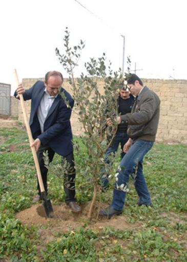 Завершается весенний этап акции по озеленению территорий