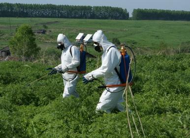 В Кемеровской области продолжается операция МАК 2010
