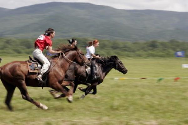 Сегодня в поселке Трещевский состоятся конноспортивные соревнования
